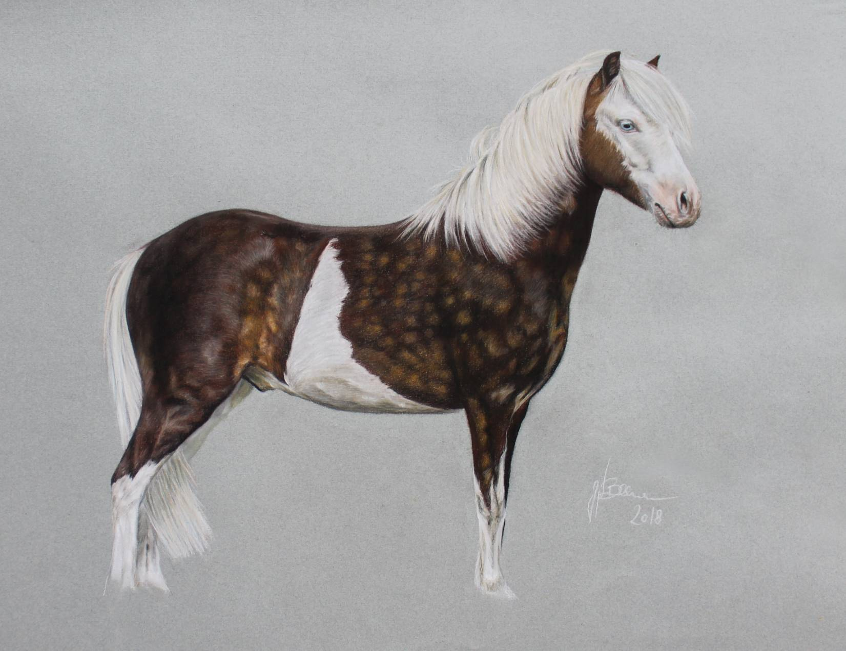 Pony in Pastellkreide 55x75